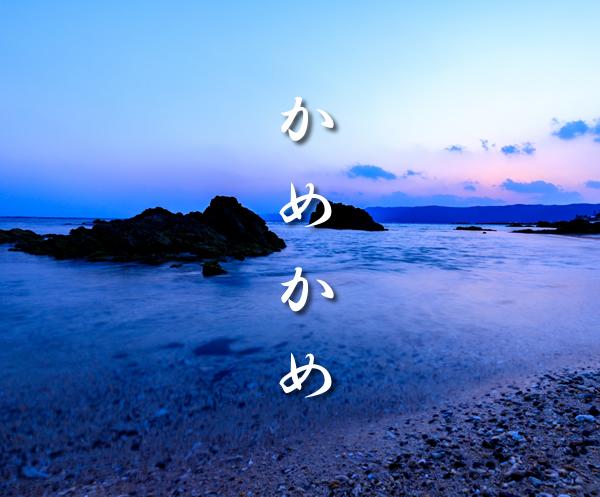 奄美大島料理
